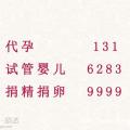 浙江代孕13162839999