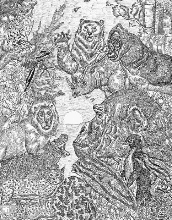 11岁天才小画家 对动物界的了解程度令人惊叹-图片