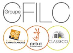 Logo Groupe CFILC taille signature emails_副本.jpg