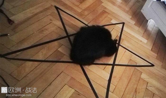 cat-owner-draws-circle-black-cat-3-58ef666b16f05__700.jpg
