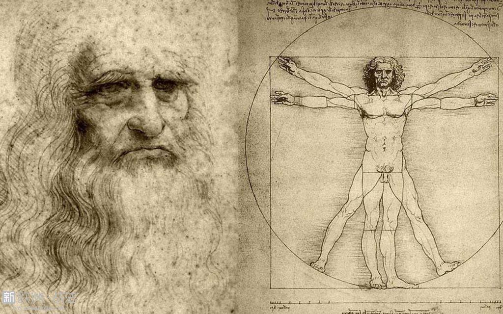da-Vinci-drawings.jpg