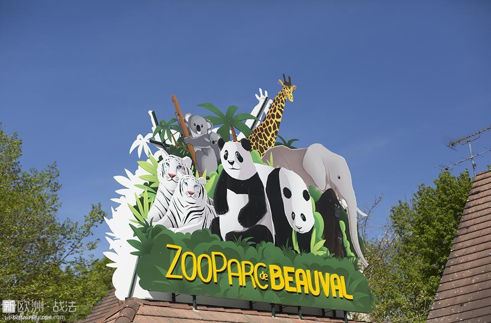 zoo-beauval-4.jpg