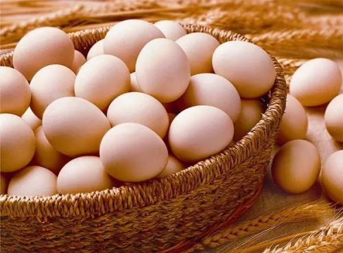 广州鸡蛋批发价格