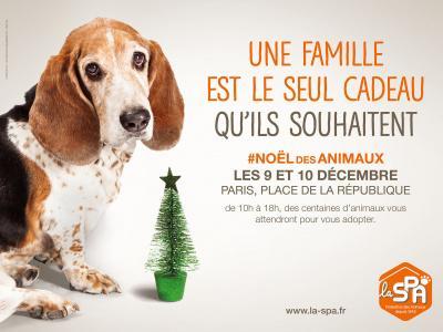 314678-le-noel-des-animaux-spa-2016-sur-la-place-de-la-republique.jpg