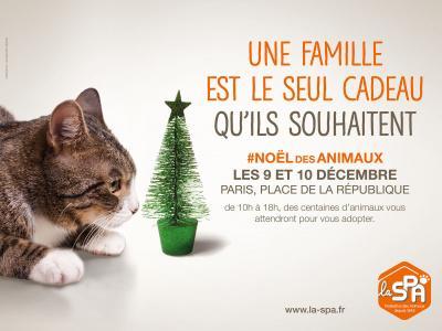 314684-le-noel-des-animaux-spa-2016-sur-la-place-de-la-republique-2.jpg