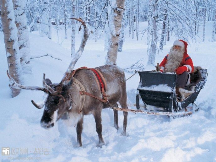 9231_Real-Santa-Claus-and-his-reindeer-in-the-white-forest.jpg