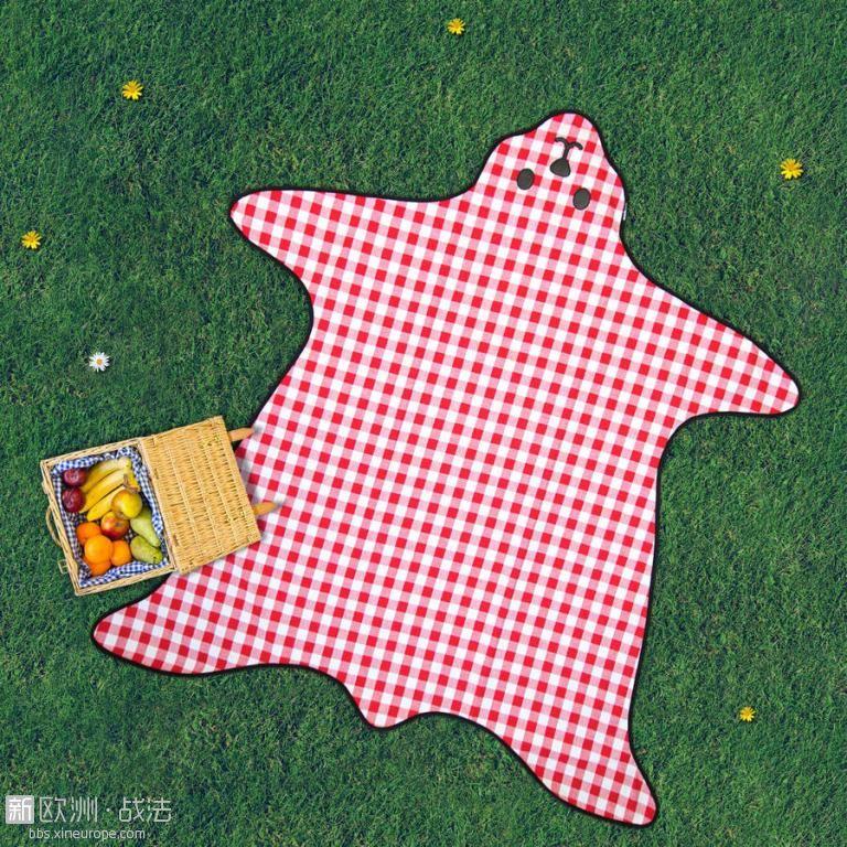 original_bear-skin-picnic-blanket.jpg