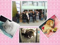 和新欧洲一起去巴黎宠物展啦~可爱的宠物用品等着你哟~[p