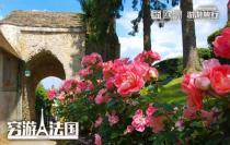 5月27日出發!GERBEROY中世紀小鎮!還有6月3日玫瑰節確認發!